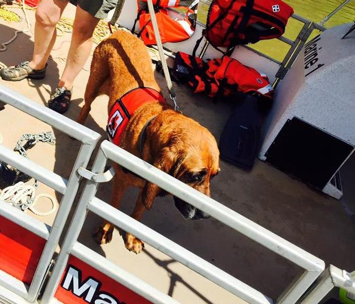 Towns County Search and Rescue Dive Team Expo