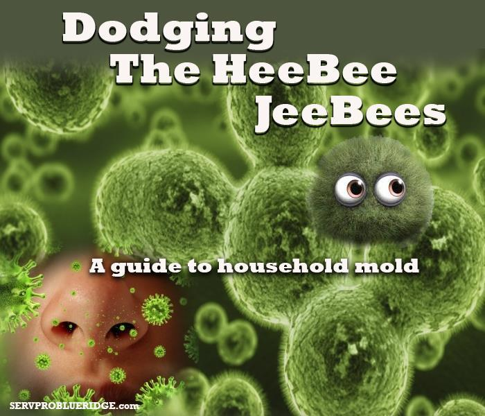 Mold Remediation Don't take a chance on getting the Heebee Jeebees!