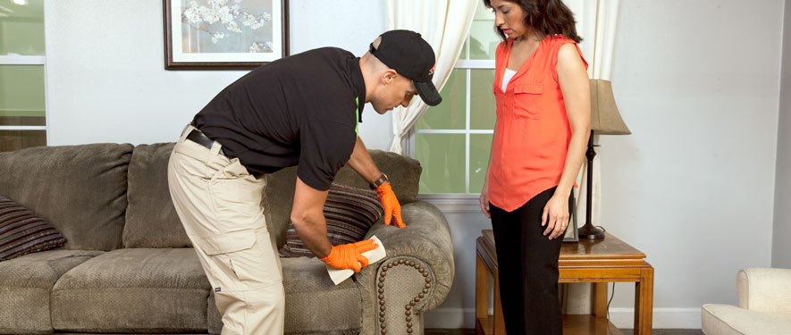 Ellijay, GA carpet upholstery cleaning