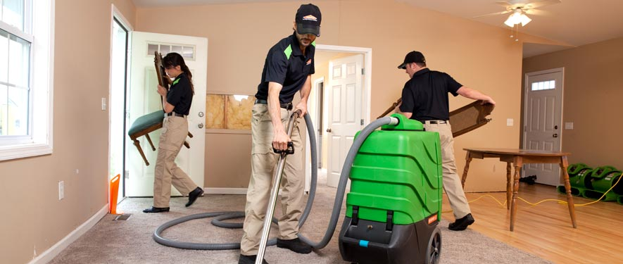 Ellijay, GA cleaning services